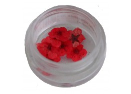 Сухоцветы в баночке т4 красные крупные