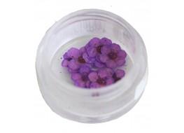 Сухоцветы в баночке т6 фиолетовые крупные