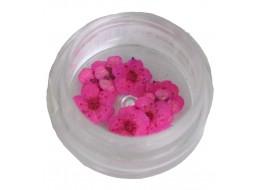 Сухоцветы в баночке т5 розовые крупные