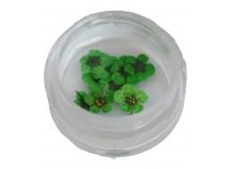 Сухоцветы в баночке т7 зеленые крупные